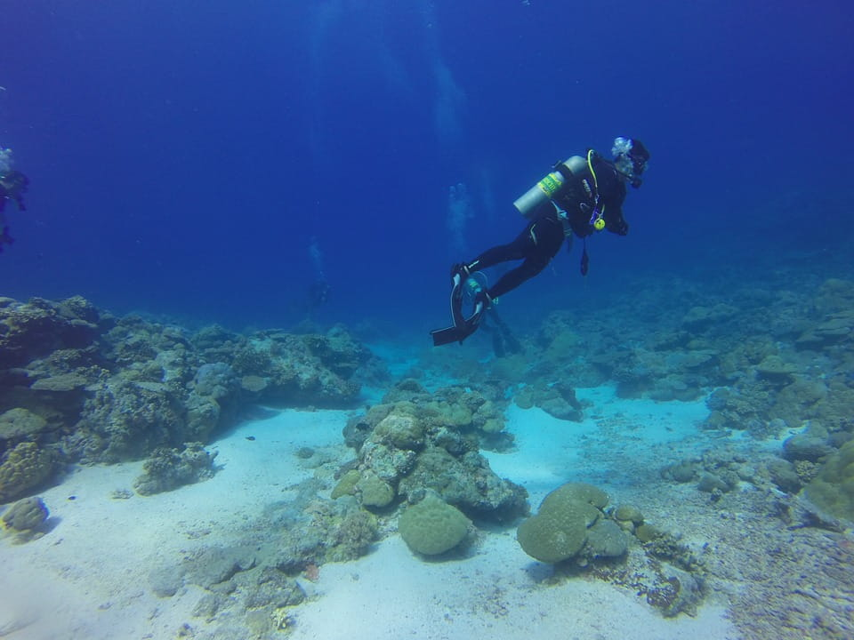 Case Study: Dive Right In Scuba Increases Profit by 1,339% with StubGroup